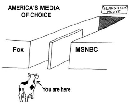Fox New vs. MSNBC